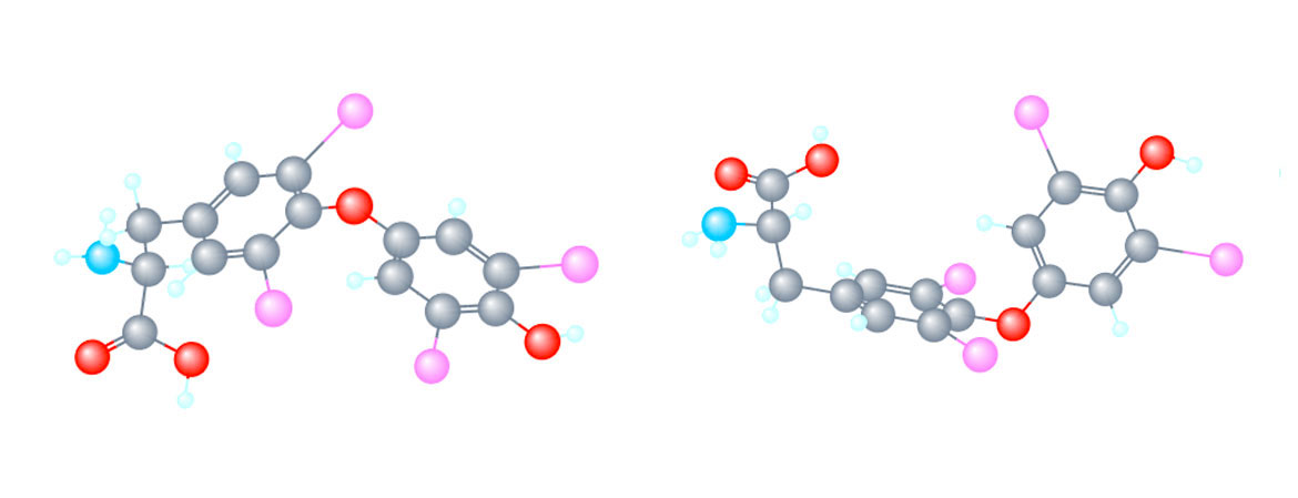 IBSA molecules levotyrox